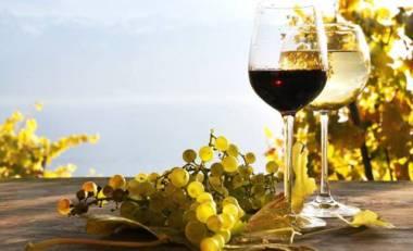 vino-bicchieri1